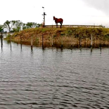 Inundación Buenos Aires